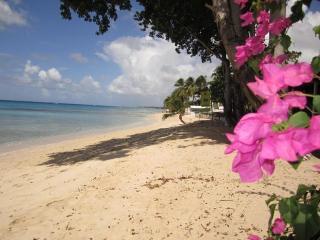 Ajoupa 6, Air-Cond Villa with Pool and Sea Views - Saint James vacation rentals