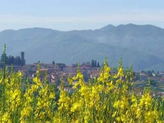3 bedrooms holiday villas in Barga Tuscany, Lucca - Barga vacation rentals