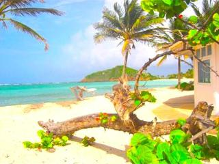 Wildflower Villa - Palm Island - Saint Vincent and the Grenadines vacation rentals