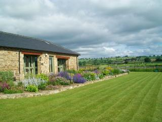Diamond Hill Farm - North Yorkshire vacation rentals