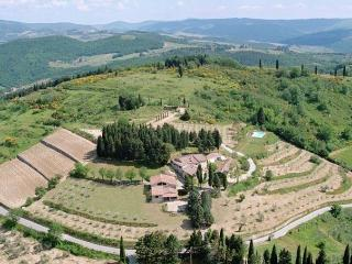 Stunning Country Villa at Montefili in Greve, Chianti - Lucolena vacation rentals
