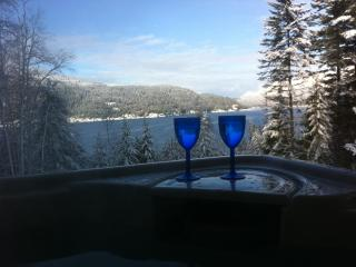 Raspberry Hill,  sauna , hot-tub , with lake view - Nelson vacation rentals