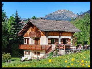 4 STARS - DREAM CHALET in La Clusaz area - HOT TUB - Megève vacation rentals