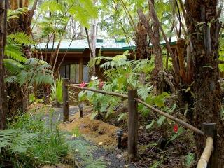 Enchanted Rainforest Cottages, near park entrance - Puna District vacation rentals