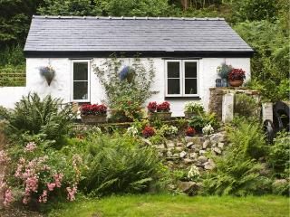 WATERMILL STUDIO COTTAGE, pet friendly, country holiday cottage, with a garden in Afonwen, Ref 4472 - Nercwys vacation rentals