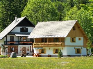 Alpik Apartment at Lake Bohinj - Bohinjsko Jezero vacation rentals