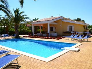 VILLA MARINESCA BEAUTIFUL VILLA WITH SWIMMING POOL - Bari vacation rentals