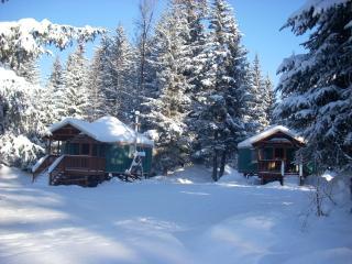 Yurt lodging in Seward -(2) 24ft.and (1)30ft. Yurt - Seward vacation rentals