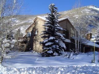 Vail Ski House- Very Close to Slopes! - Vail vacation rentals