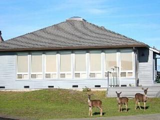 """Sea Crest"", Cozy! Great Ocean Views, Meandering Deer! - Dillon Beach vacation rentals"