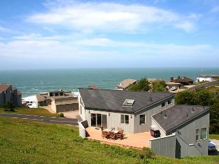 """Selkie Seas"" Bluff Beauty!  A Dillon Fav! VIEWS, Pups, 6 min Walk to Beach! - Dillon Beach vacation rentals"