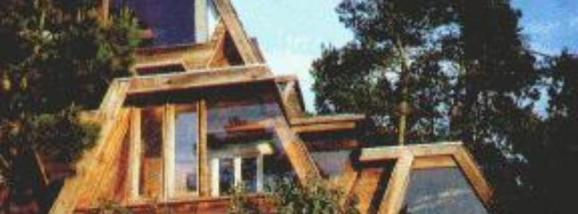 Architect designed all wood & glass hideaway - Unique & romantic house in charming Cambria, CA - Cambria - rentals