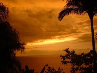 Casa Carter - Breathtaking Views of Banderas Bay - Puerto Vallarta vacation rentals