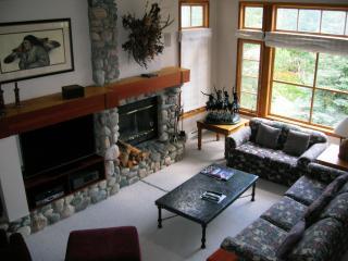 Meadows ski in Beaver Creek townhome - Beaver Creek vacation rentals