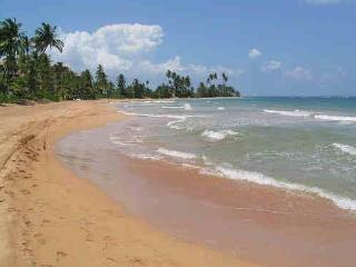 $1863  5br Villa,pool,89 step to pvt beach - Humacao vacation rentals