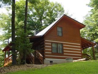 Secluded Honeymoon Cabin/Hot Tub/WiFi/FP/Christmas Tree Pkg or Winter Rates - Boone vacation rentals