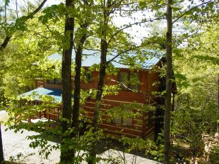 Sky Balcony off Master/Hiking/Fishing/Hot Tub/WiFi/Choose&Cut Pkg or Winter Rate - Boone vacation rentals