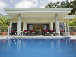 Modern Luxury, Wildlife, Ocean View, Private Pool - Manuel Antonio National Park vacation rentals