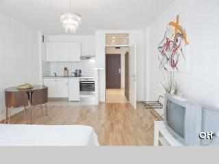 Studio City centre Anilin - Image 1 - Vienna - rentals