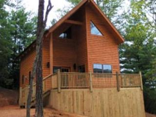 Blue Ridge Parkway Cabin HOT TUB Get a 4th night FREE Lay-a-way with $100 down! - Blowing Rock vacation rentals