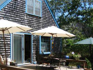 Bright House with Deck and Internet Access - Oak Bluffs vacation rentals