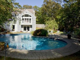 5 Min to Bridgehampton n Sag Harbor 8 Min Ocean - Bridgehampton vacation rentals