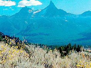 Paradise Valley Vacation - Yellowstone vacation rentals