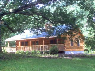 Serendipity Cabin at Mt. Mitchell - Marion vacation rentals