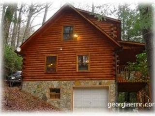 This is a charming, log cabin in the heart of the mountains! - Blairsville vacation rentals