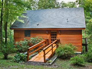 Adorable 3 bedroom Cabin in Mineral Bluff - Mineral Bluff vacation rentals