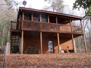 Adorable Cabin with Internet Access and Dishwasher - Mineral Bluff vacation rentals