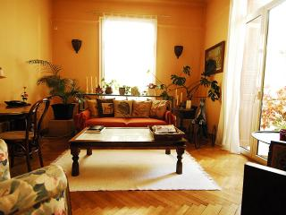 Your Athens Home Away from Home-Hilton Area - Athens vacation rentals