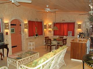 Amore Loft Apartment - Saint John vacation rentals