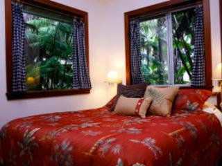Rainforest Studio - RAINFOREST STUDIO with Courtyard - Volcano - rentals