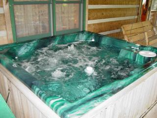 Private-Boone 15 min/Hot Tub/WiFi/Hiking/Christmas Tree Package or Winter Rates - Boone vacation rentals