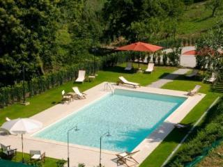 Cassiopea Co - Lamporecchio vacation rentals