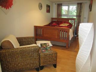 Apartment close to nature & downtown Vancouver - Coquitlam vacation rentals