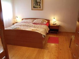Appartment Dante at Skvor holidayhouse Robidisce - Slovenia vacation rentals