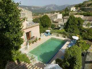 Maison Rose Large Villa with Pool & WiFi - Cipieres vacation rentals