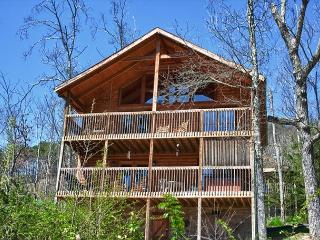 Large Mountain Cabin on Bluff Mountain, Just Outside Pigeon Forge! - Knoxville vacation rentals