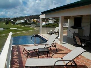 Private 3-bedroom Villa with infinity edge pool! - Frigate Bay vacation rentals