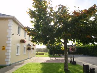 Nice 2 bedroom Apartment in Killarney - Killarney vacation rentals