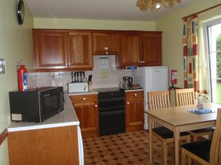 Cozy 2 bedroom Condo in Killarney - Killarney vacation rentals