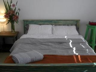 2 bedrooms with private terraces Palermo - Buenos Aires vacation rentals