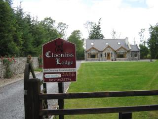 Luxurious 4 Bedroom House  in the West of Ireland - Strokestown vacation rentals