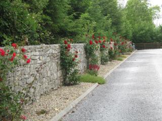 Luxurious 4 Bedroom House  in the West of Ireland - Roscommon vacation rentals