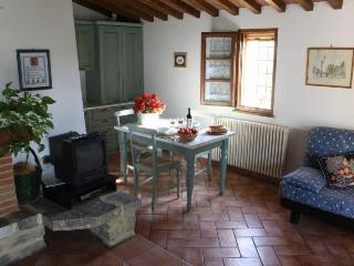 Charming apartment in a small Chianti Farmhouse - Barberino Di Mugello vacation rentals