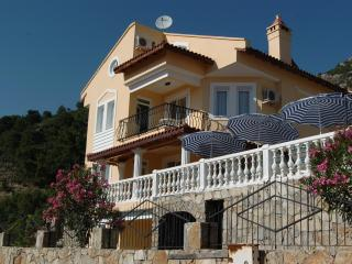 Large Holiday Villa with Gym/Games Room in Fethiye - Mugla vacation rentals