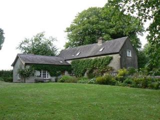 3 bedroom Cottage with Internet Access in New Ross - New Ross vacation rentals