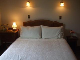 Villa In The Vines - Martinborough - Martinborough vacation rentals